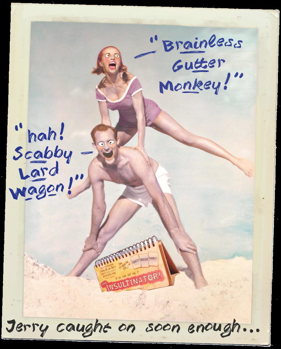 summer fun beach insultinator kickstarter insult  funny