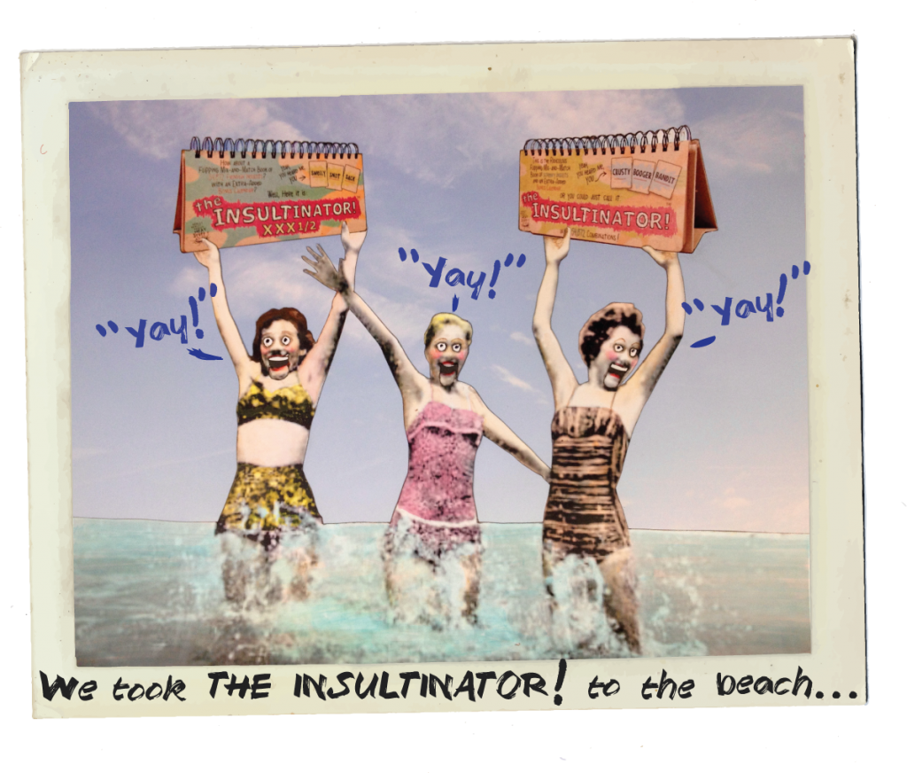 girls on the beach summer insultinator kickstarter beach party funny comic